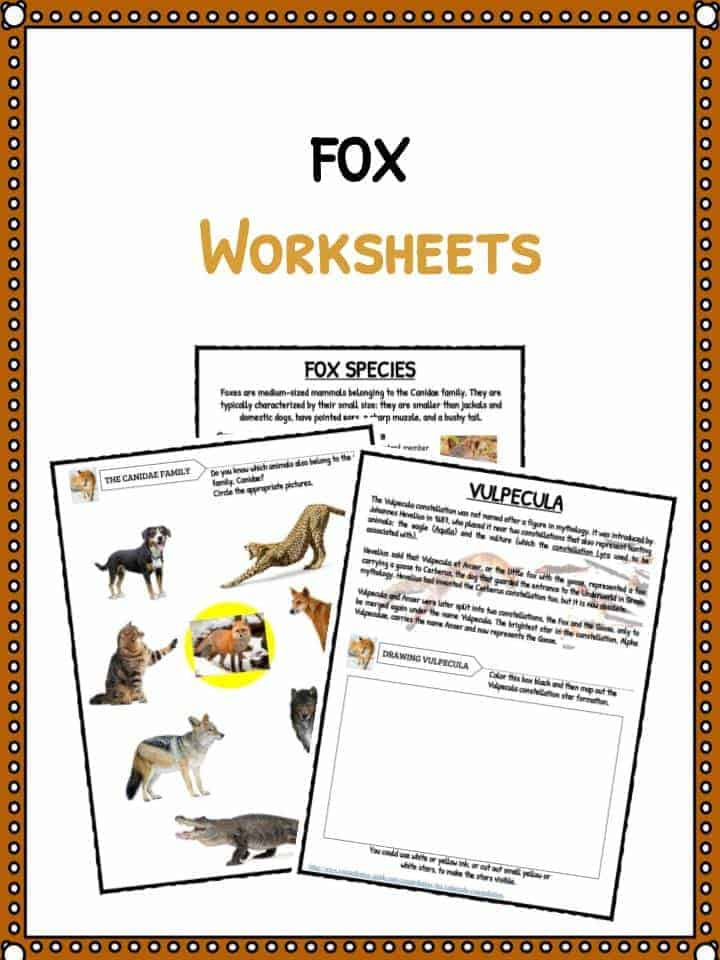 FOX Facts & Worksheet