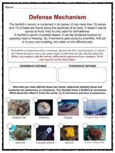 Lionfish Facts Habitat Worksheets Life Cycle Information For Kids