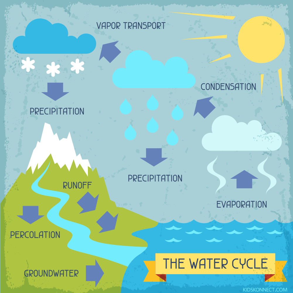 Illustration showing how water changes state through the cycle. It can be a liquid, vapour, or a solid