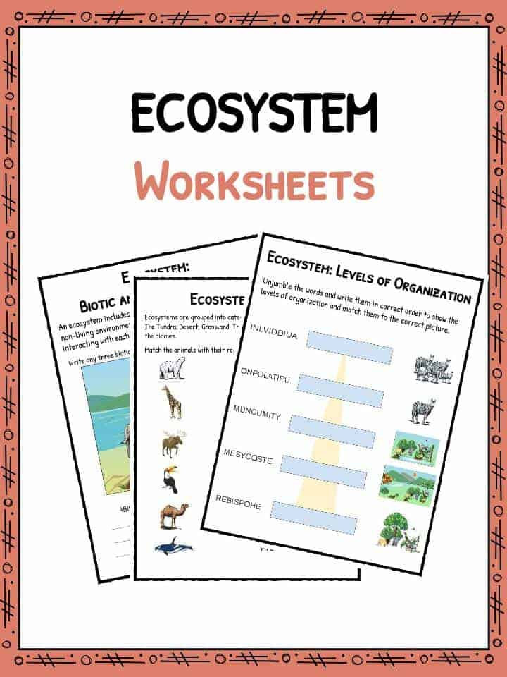 It is a picture of Free Printable Ecosystem Worksheets for ecosystem crossword puzzle