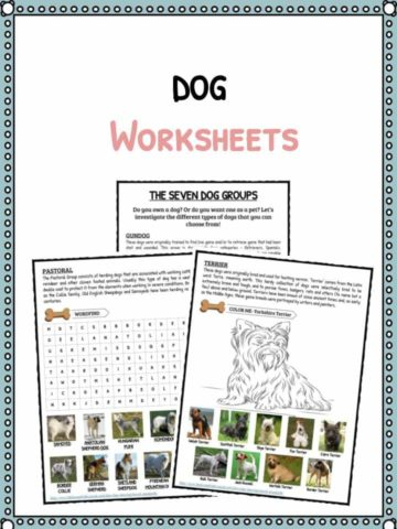 Dogs Facts & Worksheets