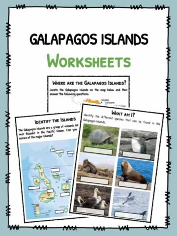 Galapagos Islands Facts & Worksheets