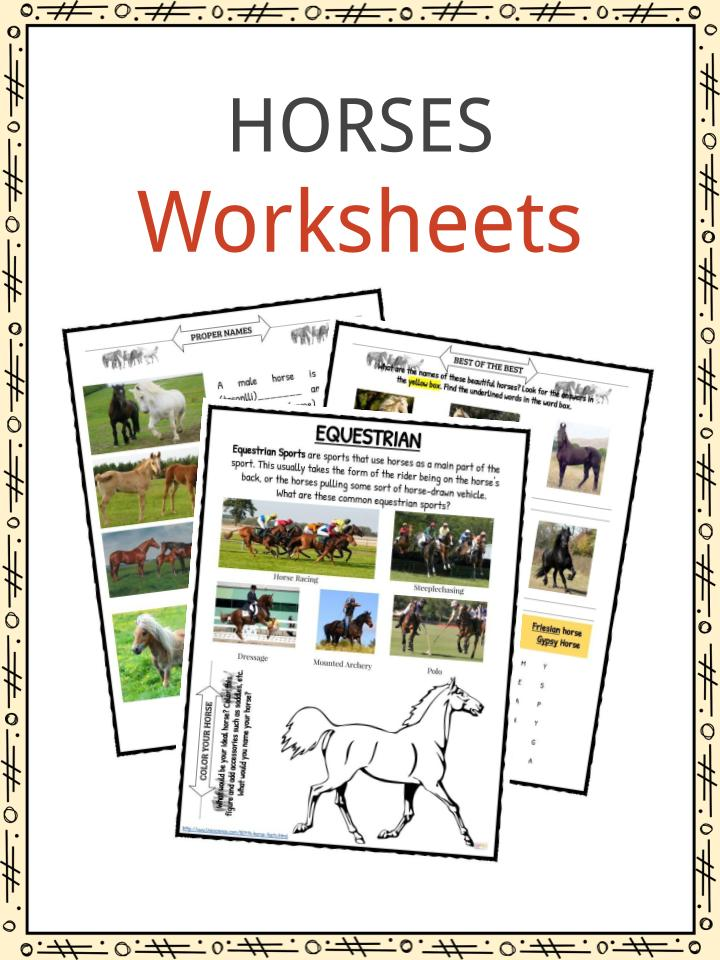 Horse Facts And Worksheets For Kids • KidsKonnect