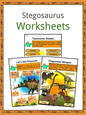Stegosaurus Worksheets