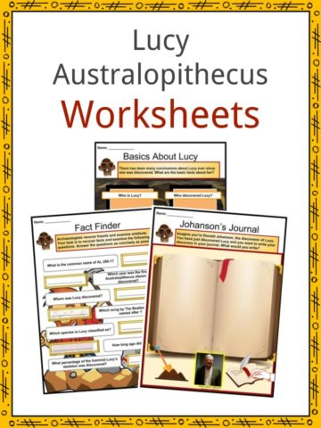 Lucy Australopithecus Worksheets