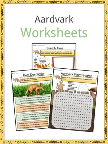 Aardvark Worksheets