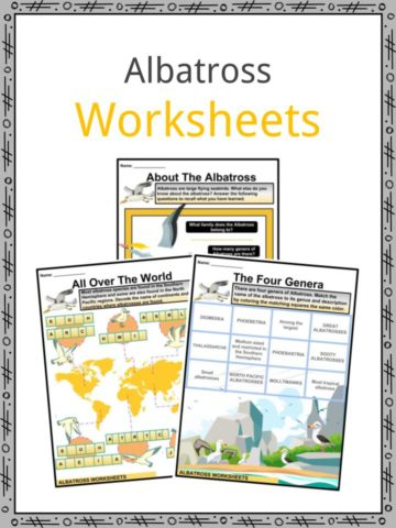 Albatross Worksheets