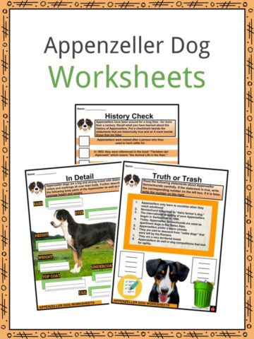 Appenzeller Dog Worksheets