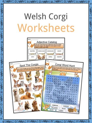Welsh Corgi Worksheets