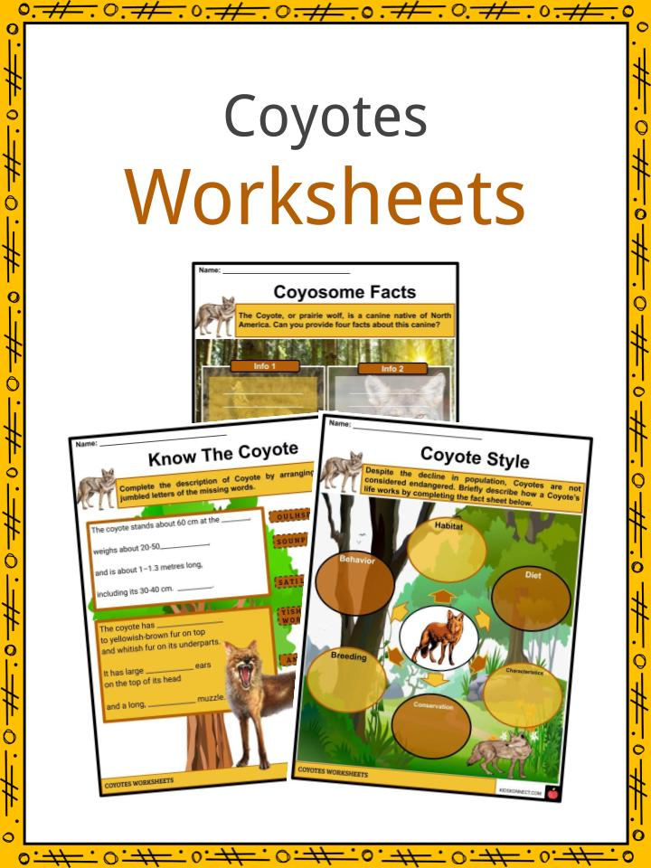 Coyotes Worksheets