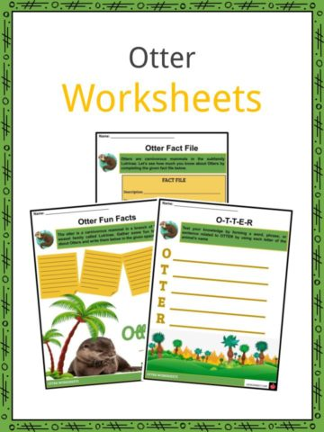 Otter Worksheets