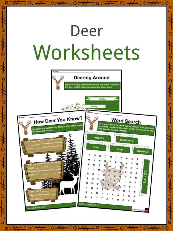 Deer Worksheets