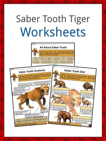 Saber Tooth Tiger Worksheets