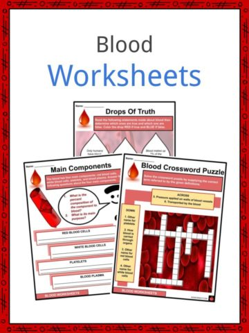 Blood Worksheets