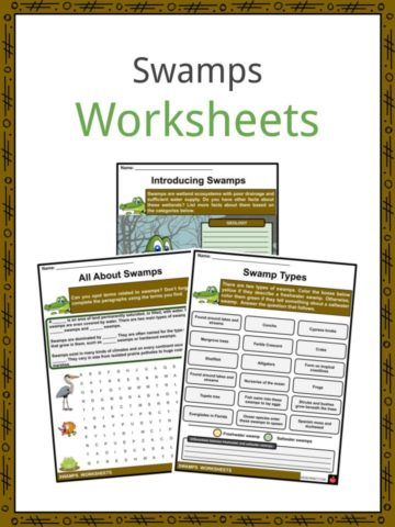 Swamps Worksheets