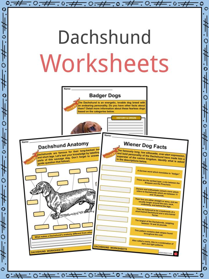 Dachshund Worksheets