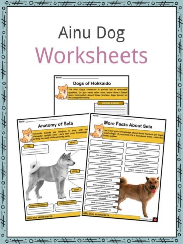 Ainu Dog Worksheets