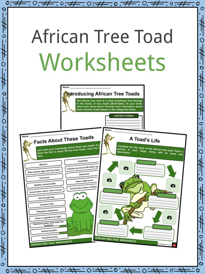 African Tree Toad Worksheets