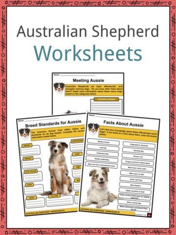 Australian Shepherd Worksheets