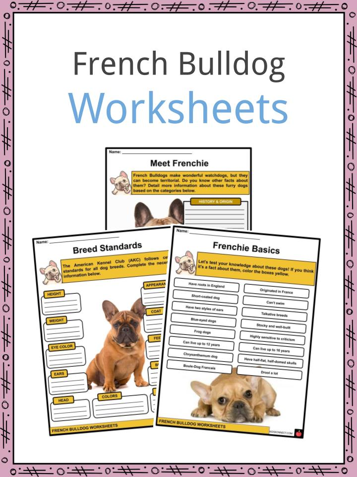 French Bulldog Worksheets