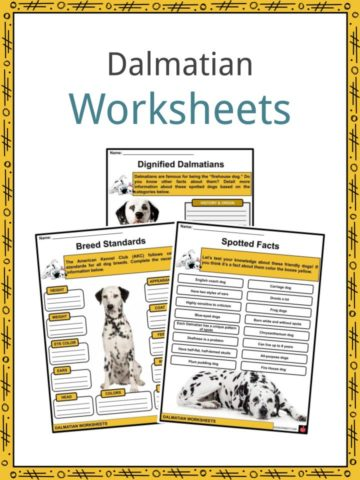 Dalmatian Worksheets