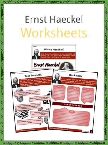 Ernst Haeckel Worksheets