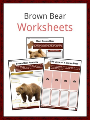 Brown Bear Worksheets