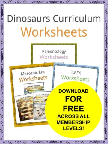 Dinosaurs Curriculum Worksheets