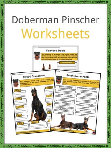 Doberman Pinscher Worksheets