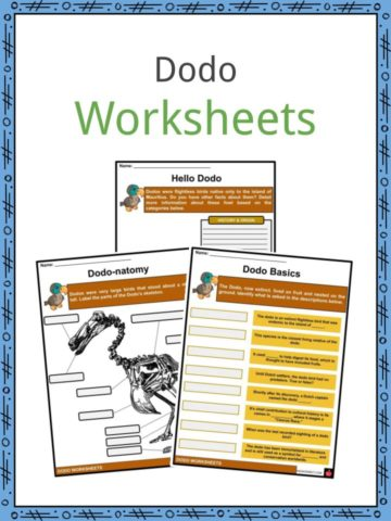 Dodo Worksheets