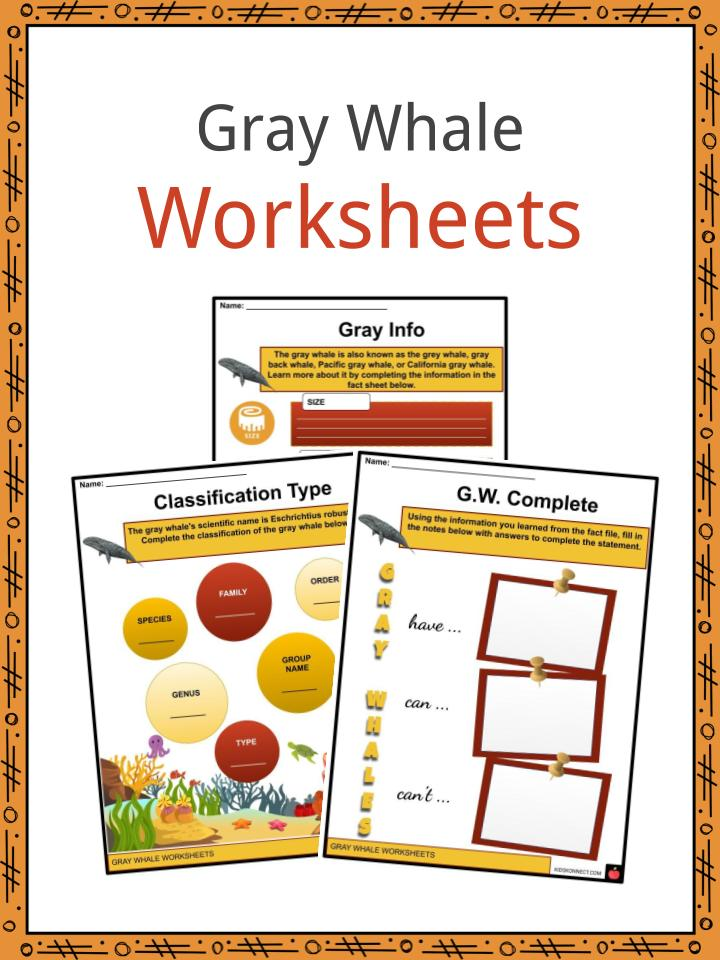 Gray Whale Worksheets