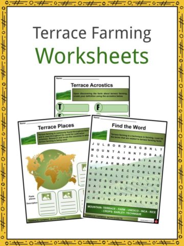 Terrace Farming Worksheets