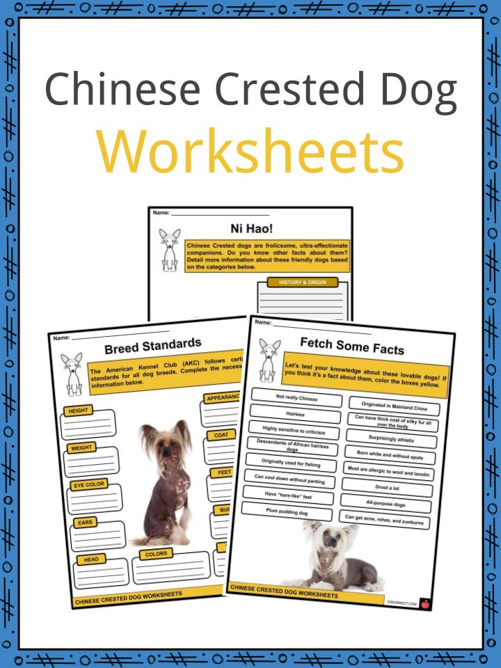 Chinese Crested Dog Worksheets