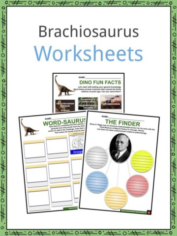 Brachiosaurus Worksheets