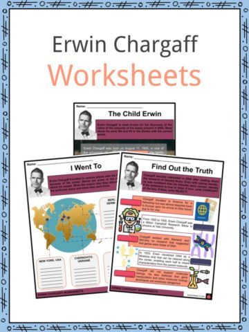 Erwin Chargaff Worksheets
