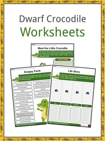 Dwarf Crocodile Worksheets