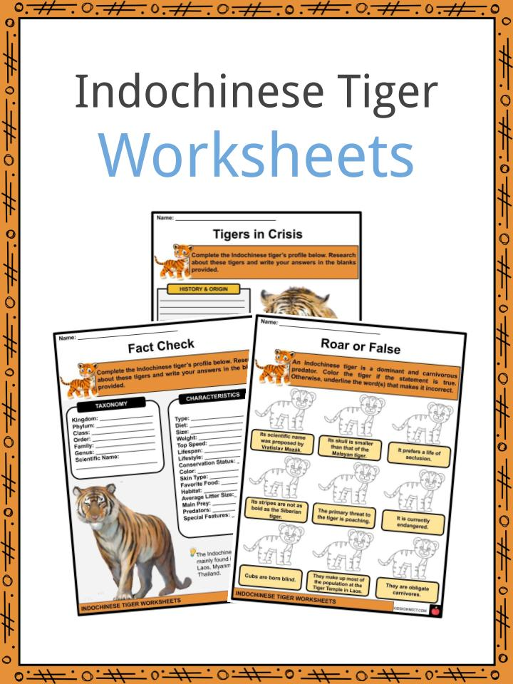 Indochinese Tiger Worksheets