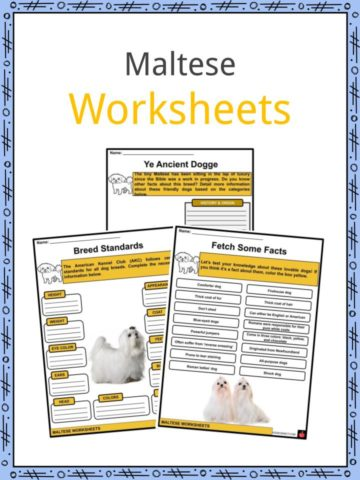 Maltese Worksheets
