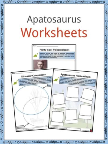 Apatosaurus Worksheets