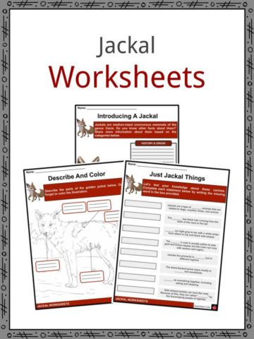 Jackal Worksheets