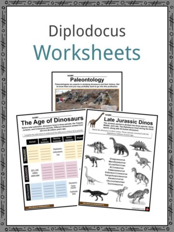 Diplodocus Worksheets