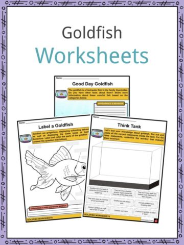Goldfish Worksheets